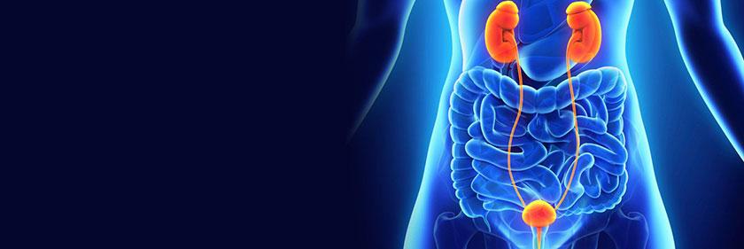 Raazi Hospital urology